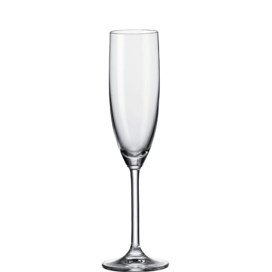 Daily champagneglas 200ml